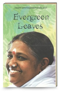 Evergreen-Leaves-English